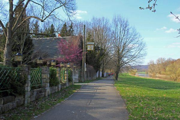 KM28_Elberadweg mit Seitenarm der Elbe