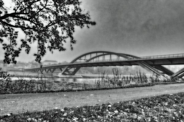 KM37_Elberadweg in Höhe Waldschlößchenbrücke