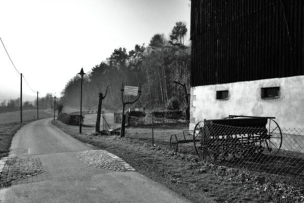 KM6_Elberadweg Höhe Kurort Rathen in Richtung Königstein